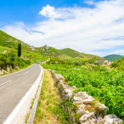 korcula peljesac tour from dubrovnik