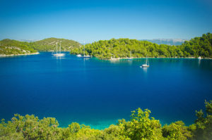 Mljet excursion from Dubrovnik