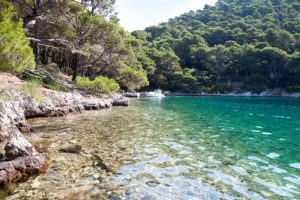 Mljet tour from Dubrovnik
