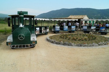 scenic train ride through konavle valley